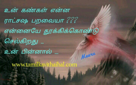 beautiful whatsapp love status dp in tamil font kankal paravai alaku boys feel meera poem