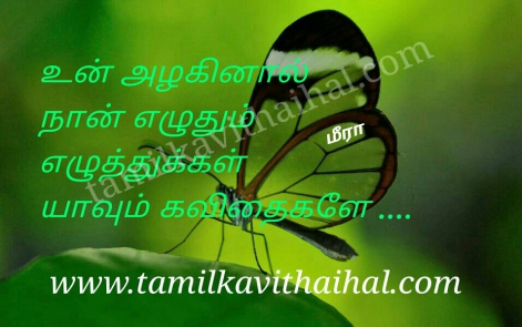 beautiful words for girl alaku beauty eluthu love kavithai meera poem hd wallpapper facebook pic