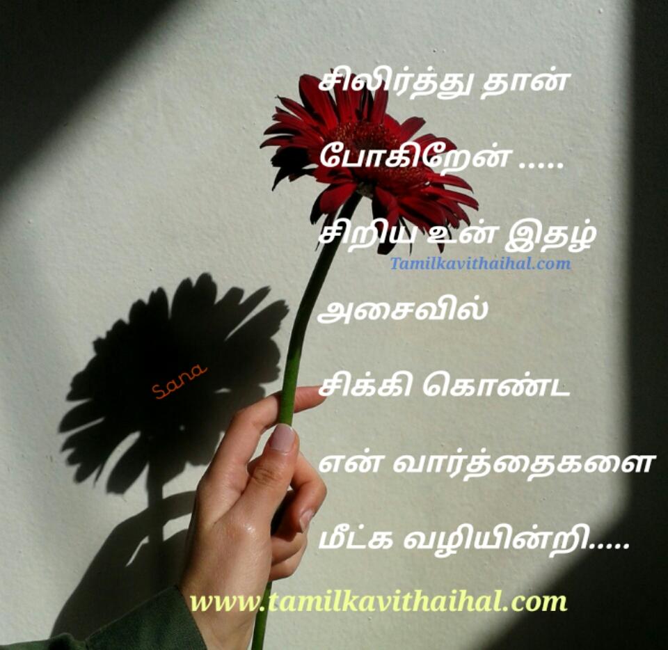 best love propose kadhal kavithai in tamil dp images sana