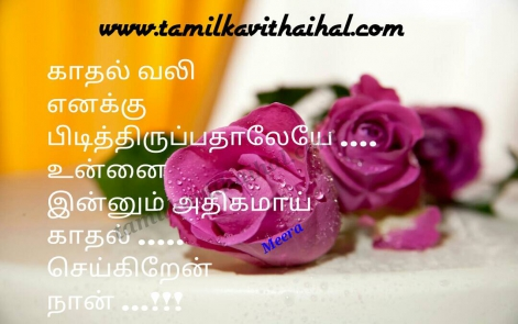 best tamil kadhal kavithai vali love like most lover beauty meera poem facebook image