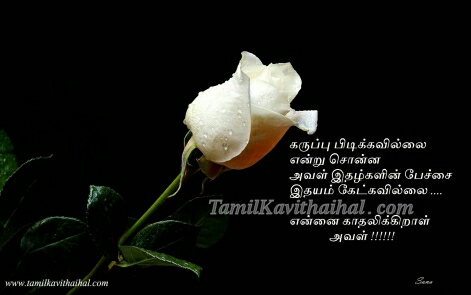 black rose tamil kadhal kavithai idhayam idhalgal ethirparpu love quotes images download