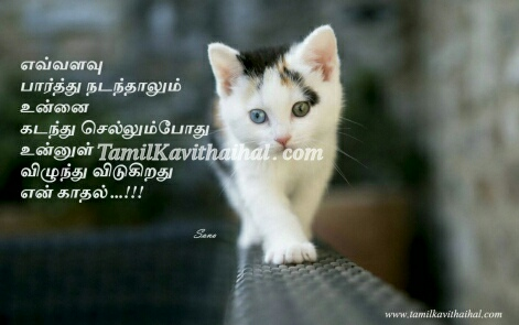 Feel Husband Wife Girl Boy Feel About Him Her In Tamil Kavithai
