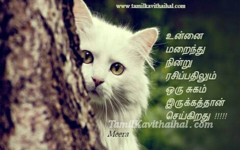 cat tree tamil kavithai kadhal girl feel boy