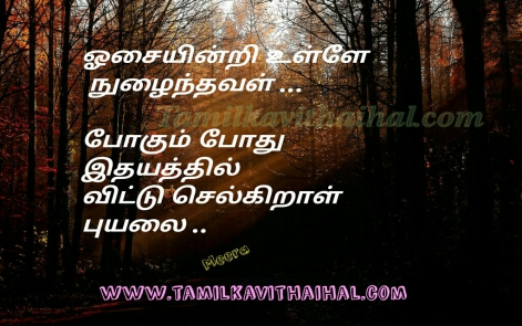 cute kadhal kavithai feel for girl oosai puyal love meera poem whatsapp images download
