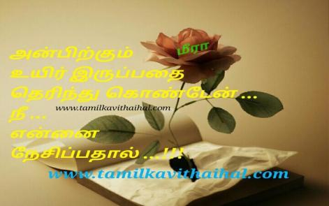 cute love feel tamil kavithai anbu karunai kadhal nesam soham meera kadhal kavithai facebook status download