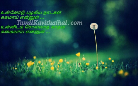 cute love soham sad kadhal kavithai flower