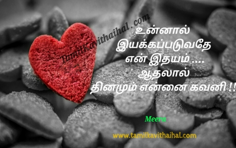 cute love tamil kavithai idhayam feel lovers quotes meera poem facebook images