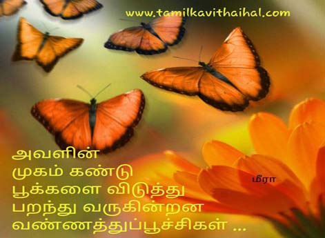 cute romance feel about girl face mukam butterfly pookal malar love kavithai in tamil meera poem whatsapp images
