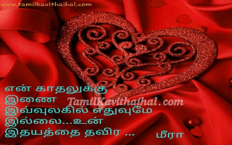 en kadhal inai illai un idhayam thavira rose red meera kavithai images download