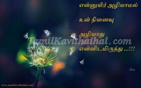 en uyir neethane tamil mudhal kadhal kavithai malar images download
