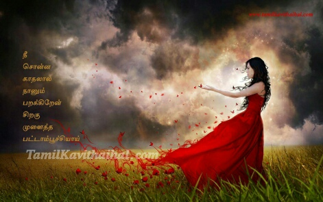 girl red rose butterfly feel tamil kavithai love