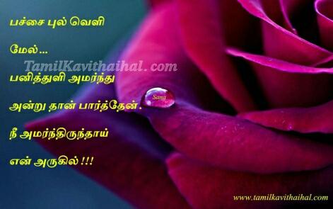 heart touching tamil kadhal kavithai pulveli panithuli devathai alagu smile vetkam image download