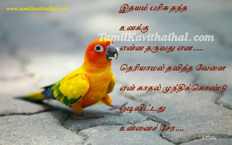 idhayam parisu thandha kadhal kavithai parrot  kavithai love sana poem tamil whatsapp images download