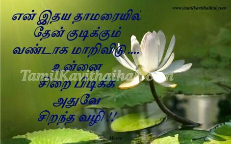 idhayam thamarai vandu malar unnai sirai pidikum vali lotus tamil romance love kavithai meera poems facebook images download
