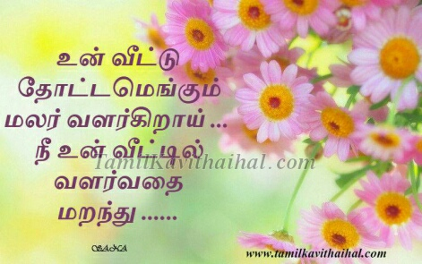 kadhal kavithaigal tamil kavithai un veetu malar meera love poems boy girl feel love proposal photos