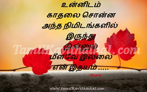 kadhal solliya nimidam nodi idhayam kadhal kavithai love first proposal girl reaction cute words in tamil language meera images