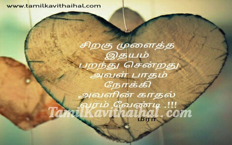 kadhal varam vendum un patham love proposal beautiful cute love quotes in tamil meera kavithaigal