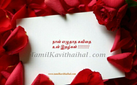 love tamil kavithai quotes rose kadhal letter