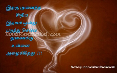 love tamil kavithaigal in tamil language iragu siragu paravai girl boy feel meera images download