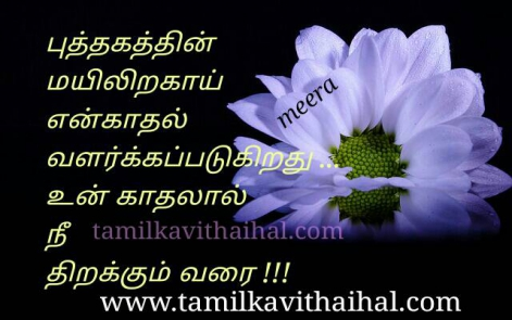 most romantic kadhal kavithai open book mayil iraku love meera poem whatsapp image download
