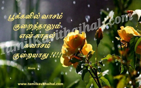 pookkal vasam en kadhal swasam kuraiyadhu love feel kavithai in tamil language meera poem facebook images