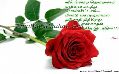red thendral tamil kadhal kavithai poi boy feel love rose images download