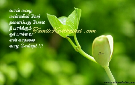 tamil kadhal kavithai malai rain boy parvai love quotes image download