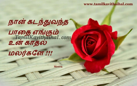 tamil love poems malar nadanthu varum pathai rose meera kadhal kavithai images download