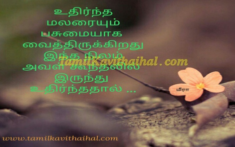 uthirntha malar pasumai un koondhal meera boy feel kavithai husband wife images