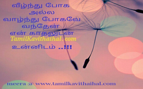 valkai unnudan mattum than meera kadhal kavithaigal and tamil cute love quotes images for facebook