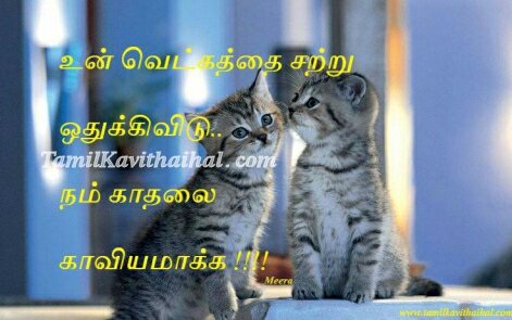 vetkam kadhal kaviyam tamil kavithai poems cat meera girl feel love proposal wallpaper download