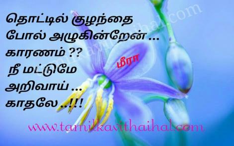 beautiful kanner vali kavithai kulanthai idhayam vali soham kadhal tholvi meera poem dp pic wallpapper