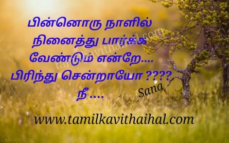 beautiful sad kavithai in tamil word piinoru naal niniathu paarka vendum pirinthu sendraai nee valigal lonley alone sana poem image