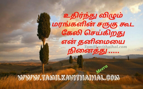 beautiful words for thanimai pirivu maram keli seikiradhu en thanimai ninaithu love mis understand meera poem whatsapp