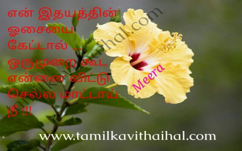 en idhayam oosai kelu ennai vilaki sella painful kadhal kavithai girl feel yellow flower meera images download