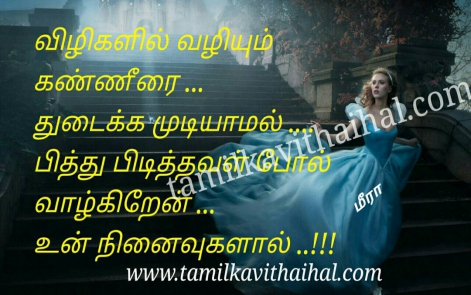 heart touching meera pain kavithai feel about wife husbend pirivu soham ninaivu mad meera poem facebook pic