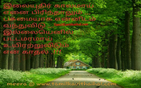 ilaiyuthir kalam pirivu kavithai tree images soham express love boy meera poem whatsapp facebook