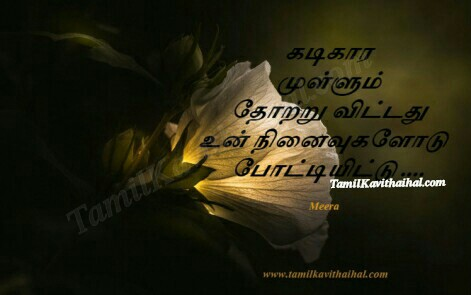 kadikaram mullum thotru vitadhu ninaivukal tamil kavithai about love sad boy feelings meera facebook images