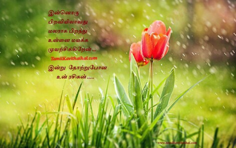 kanneer kadhal kavithai boy love failure feel about girl sad sogam image