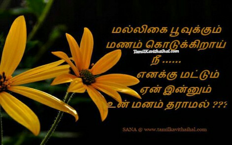 kanneer kavitai boy feel mallikai poo manam tamil poems sana one side love sana images download