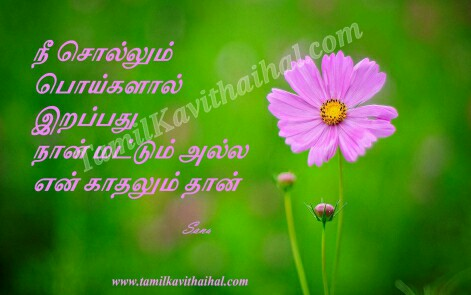 kanneer kavithaigal sogam pain poi kadhal girl feel about love failure sana images download