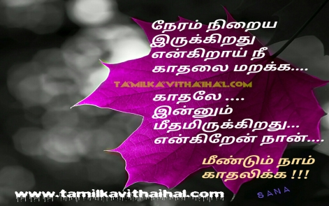 love failure kavithai soham neram pirivu heart touching word about boy one side kadhal sana poem whatsapp status download