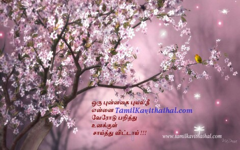 nature flower love kadhal kavithai bird tamil