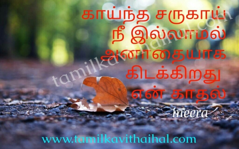 pain kadhal tholvi kavithai in tamil boy lonely love feel kaintha saruku love meera poem images