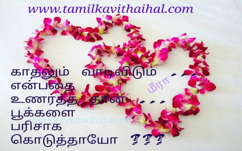 painful one sided love failure tamil kavithai female mind feel alugai kadhal vaadi vidum pookal parisu nee whatsapp dp pic