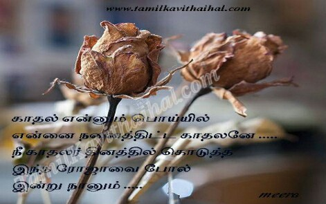soham love failure feel rose cute quotes tamil kavithai