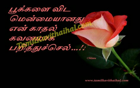 tamil kadhal kavithai love poems rose menmai pookal flowers parithu sel meera images download