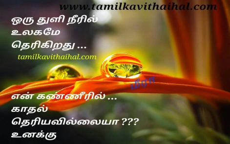 vali kadhal tholvi kanner kavithai in tamil word thuli ulakam mis understand girl feel meera poem whatsapp status download