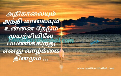 waiting kavithai in tamil language athi kalai malai thedal love feel meera poem facebook images download