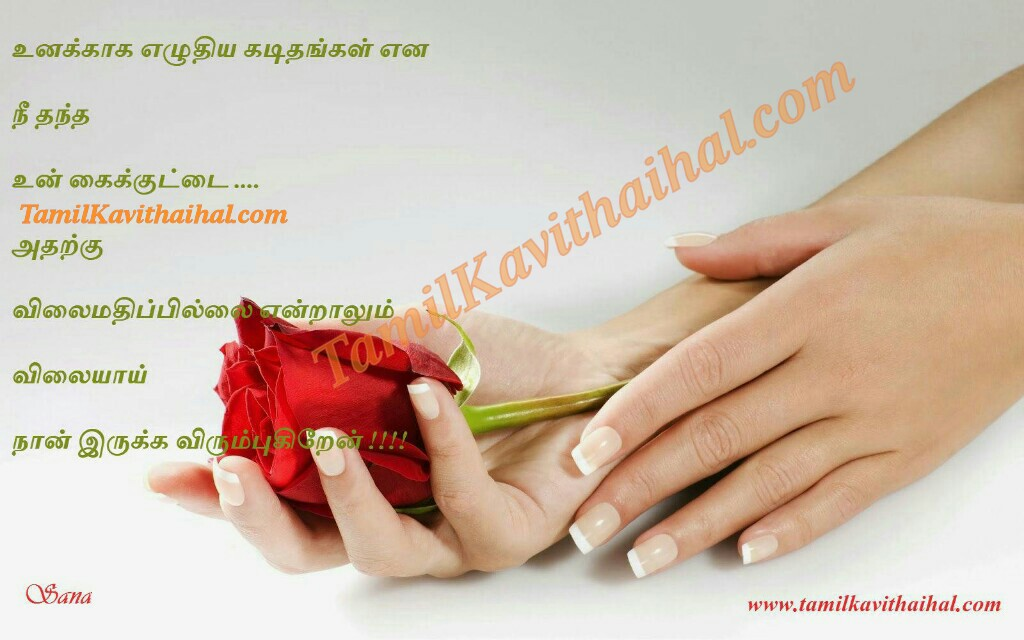 Red Rose Hands Love Tamil Kavithai College Romance